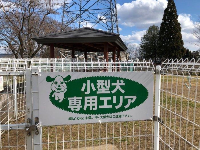 盛岡市中央公園ドッグラン小型犬専用エリア